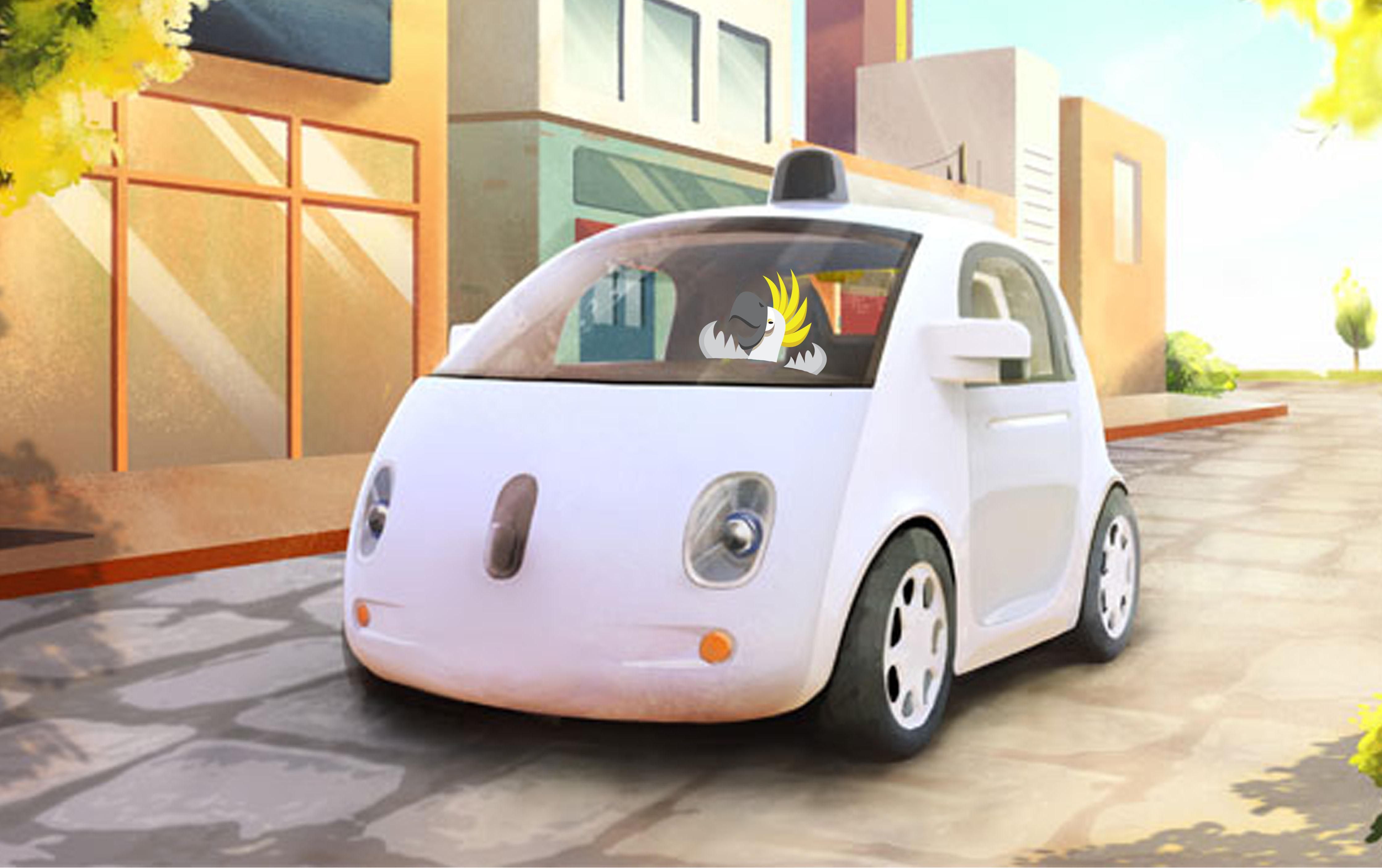 driverless car Bob