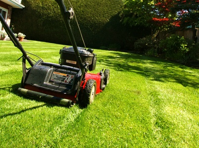 Garden contents insurance