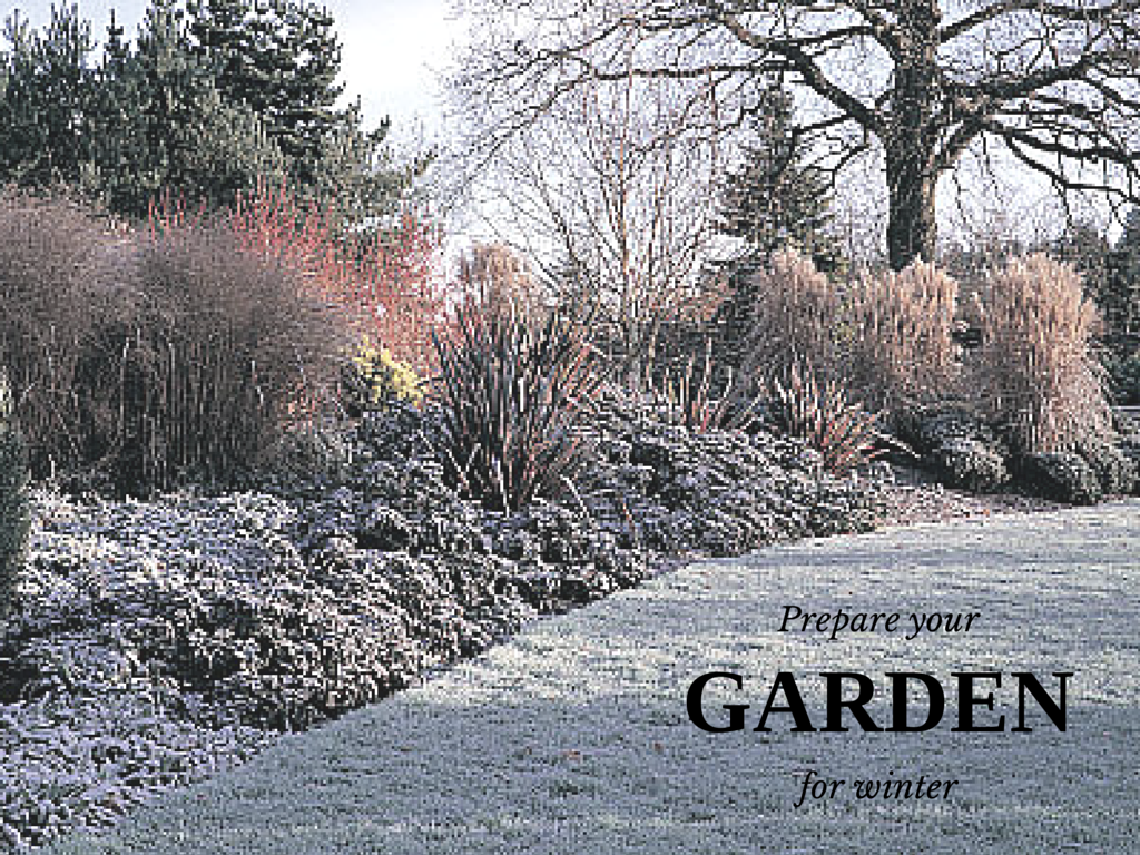 Prepare Your Home And Garden For Winter