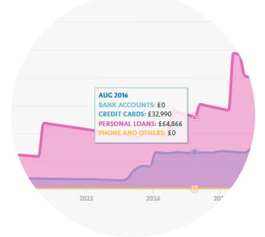 Credit report graph