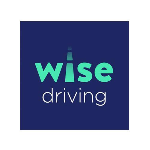 wise driving car insurance logo